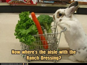 Now  where's  the  aisle  with  the  Ranch  Dressing?