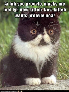 Ai lub yoo proovle, mayks me feel lyk new kitteh. New kitteh wants proovle noa!