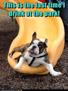 This is the last time I drink at the park!