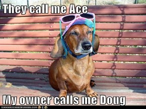They call me Ace  My owner calls me Doug