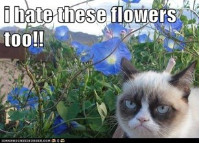 i hate these flowers too!!
