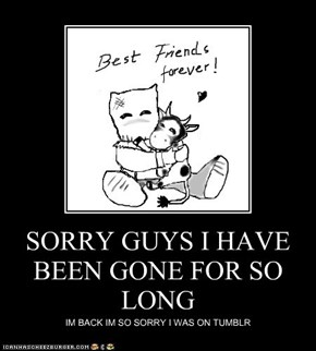 SORRY GUYS I HAVE BEEN GONE FOR SO LONG