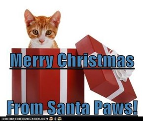 Merry Christmas From Santa Paws!