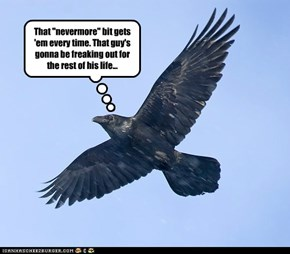 Scumbag Raven