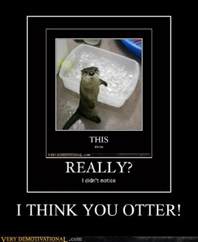 I THINK YOU OTTER!