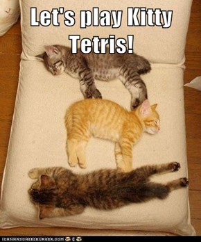 Let's play Kitty Tetris!