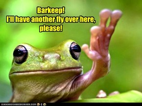 Barkeep! I'll have another fly over here, please!