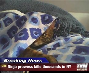 Breaking News - Ninja prowess kills thousands in NY