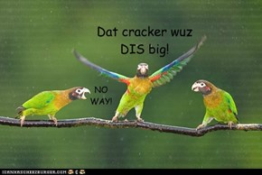 Dat cracker wuz DIS big!