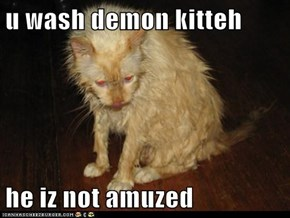 u wash demon kitteh  he iz not amuzed