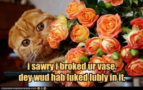 i sawry i broked ur vase. dey wud hab luked lubly in it.