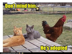 He's Adopted