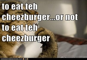 to eat teh cheezburger...or not to eat teh cheezburger