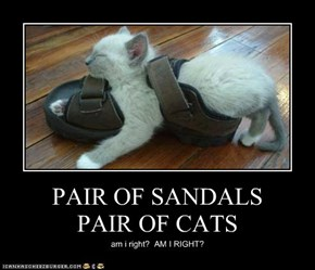 PAIR OF SANDALS PAIR OF CATS