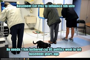 Business iz gud for Basement Cat