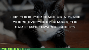Memebase In General