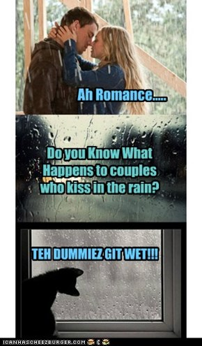 Do you Know What Happens to couples who kiss in the rain?