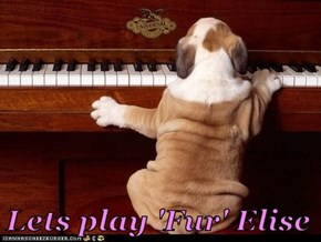 Lets play 'Fur' Elise