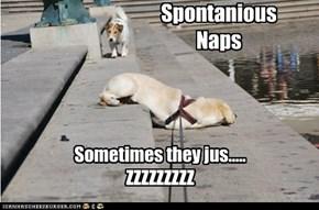 Spontanious Naps