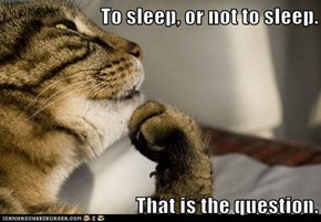 To sleep, or not to sleep.  That is the question.
