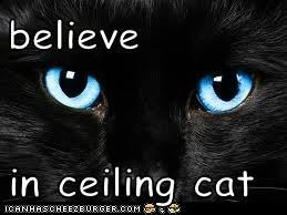 believe  in ceiling cat