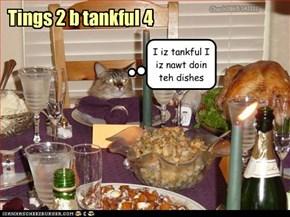 Tings 2 b tankful 4
