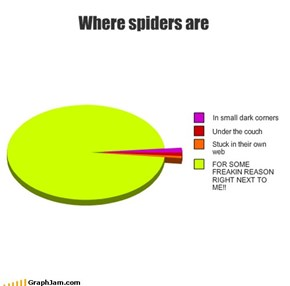 Where spiders are