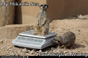My Mikanik Sez  You Skaylz A Wrong