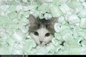 Catmouflage #79