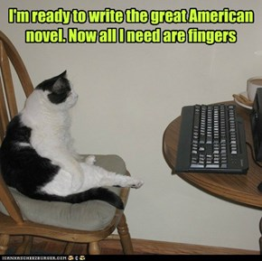 I'm ready to write the great American novel. Now all I need are fingers