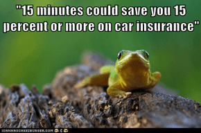 """15 minutes could save you 15 percent or more on car insurance"""