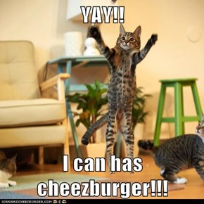 YAY!!  I can has cheezburger!!!