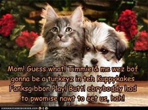 Mom! Guess what! Timmie & me wez bof gonna be a turkeyz in teh Kuppykakes Fanksgibbon Play! Butt! ebryboddy had  to pwomise nawt to eet us, hah!