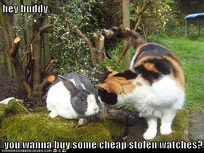 hey buddy,  you wanna buy some cheap stolen watches?