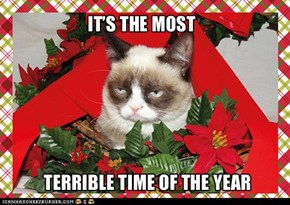 More Grumpy Cat!