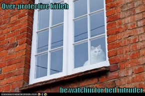 Over-protective kitteh  be watchin for bed intruder.