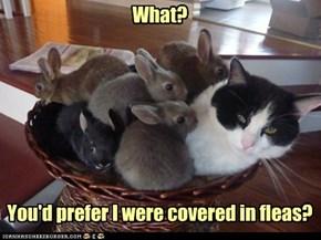 bunnies is better