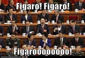 Figaro! Figaro!   Figaroooooooo!