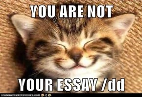 YOU ARE NOT  YOUR ESSAY /dd