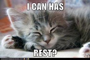 I CAN HAS  REST?