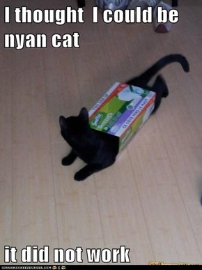 I thought  I could be nyan cat  it did not work