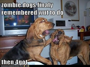 zombie dogs finaly remembered wut to do  then 4got