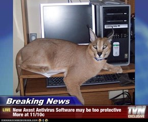 Breaking News - New Avast Antivirus Software may be too protective More at 11/10c