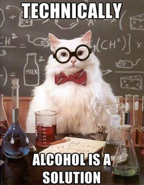 Chemistry Cat Makes a Compelling Argument