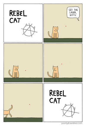 Rebel Cat is Rebellious
