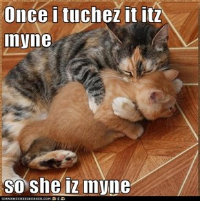 Once i tuchez it itz myne  so she iz myne