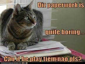 Diz paperwork is  quite boring... Can it be play tiem nao pls?