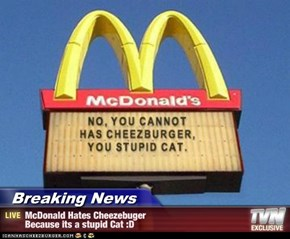 Breaking News - McDonald Hates Cheezebuger Because its a stupid Cat :D