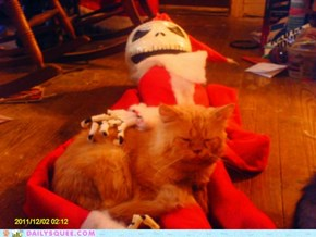 Santa, why is your lap so boney?