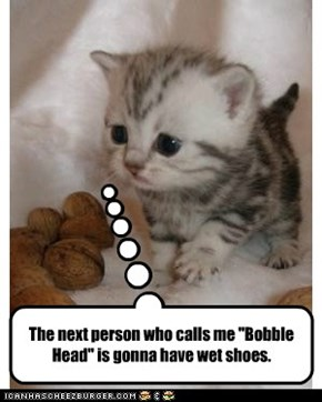 """The next person who calls me """"Bobble Head"""" is gonna have wet shoes."""